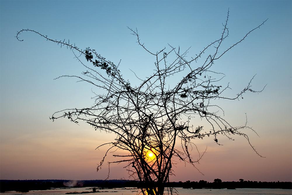 Zambezi River Sunset, Zambia