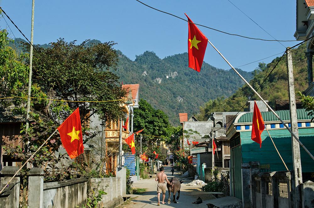 Vietnam #14