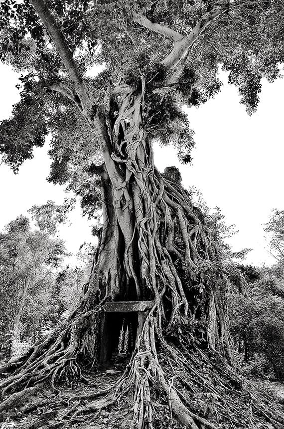 Cambodia #14